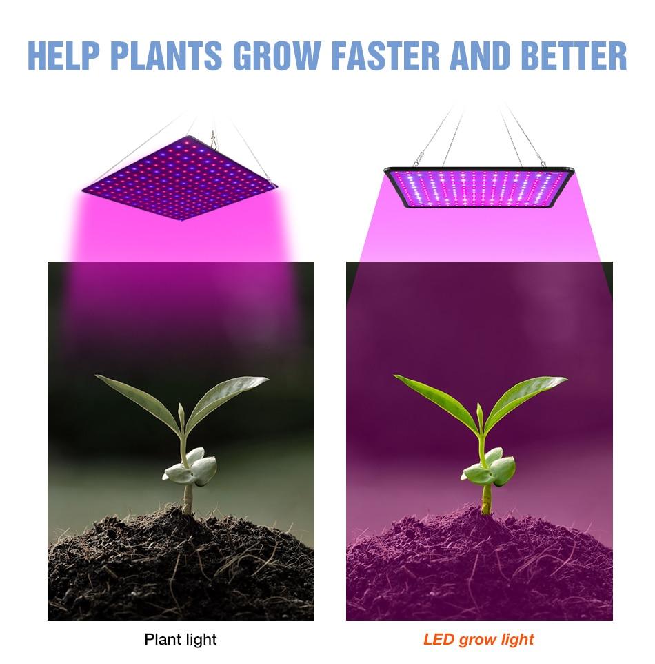 1000W Grow Light Led Full Spectrum Lamp 1500W 2000W Led Plant Light Bulb Greenhouses Indoor Phyto Lamp Grow Tent US EU UK Plug