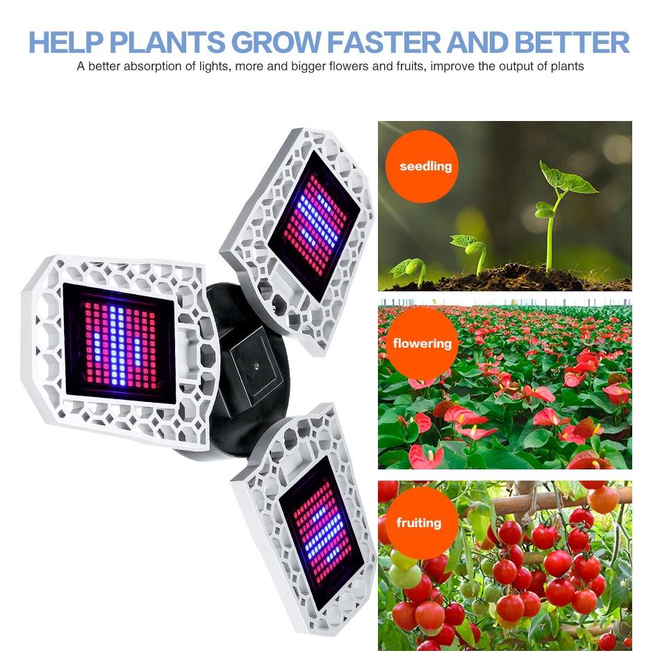LED Phyto Lamp E27 100W 200W 300W Full Spectrum LED Grow Light Plant Bulb AC100-277V Indoor Seedlings Flower Grow Tent Box IP65