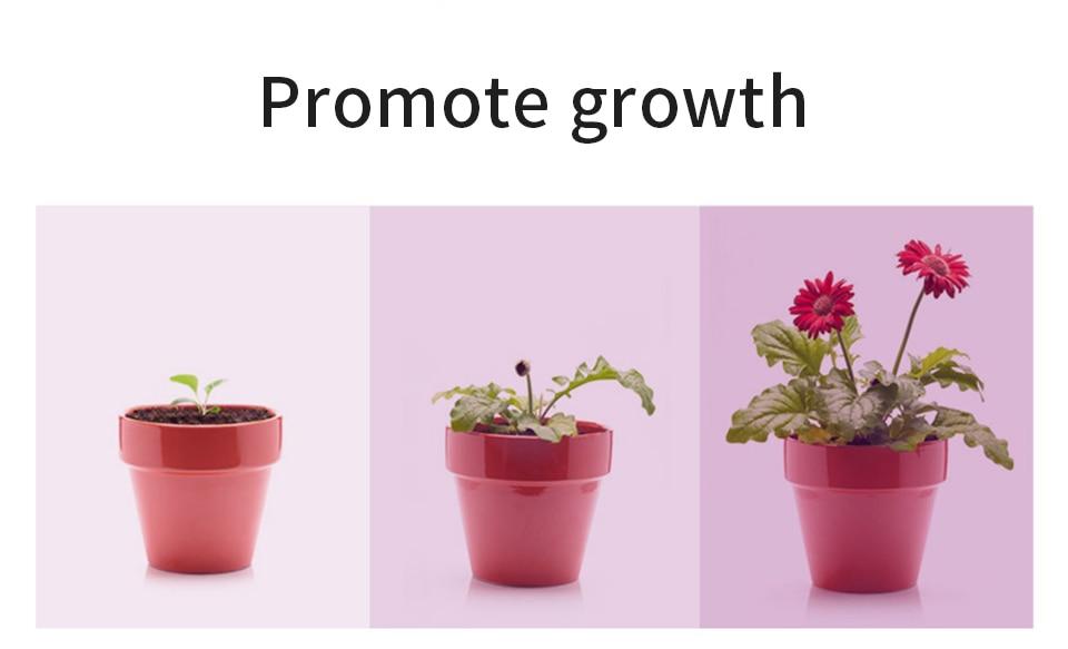 Plant Light LED Full Spectrum Grow Light Waterproof Growing LED Strip USB Indoor Phyto Lamp Flower Seedling Greenhouse Lighting