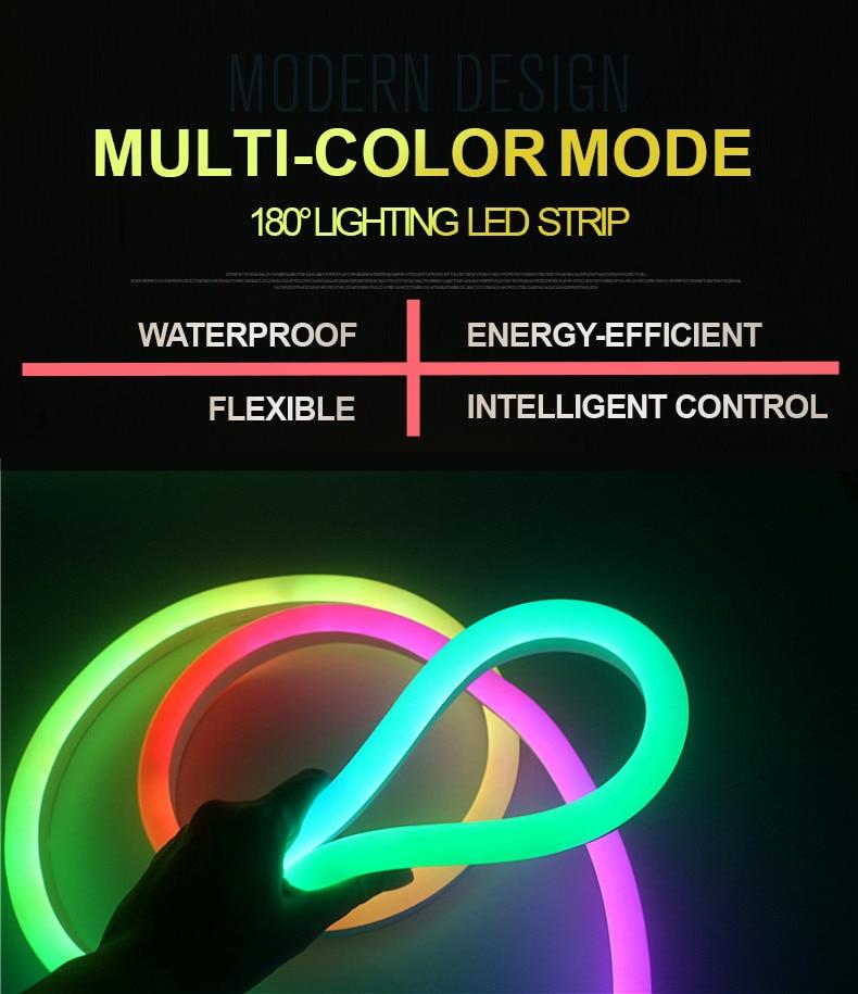 LED Strip 12V Neon Light Line Low Voltage 24V Flexible Indoor Outdoor Waterproof Soft Light Strip Smart Addressable Lights
